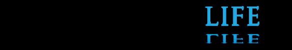 QuantumLogolong2